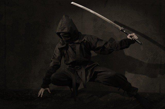 ninja-2007576 640