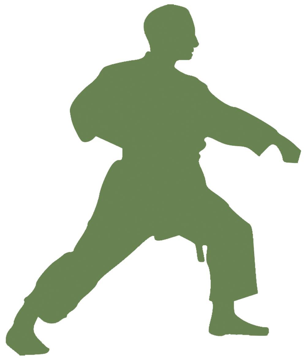 Prinzipien des Wado-Ryu: Erzeugung von Wucht