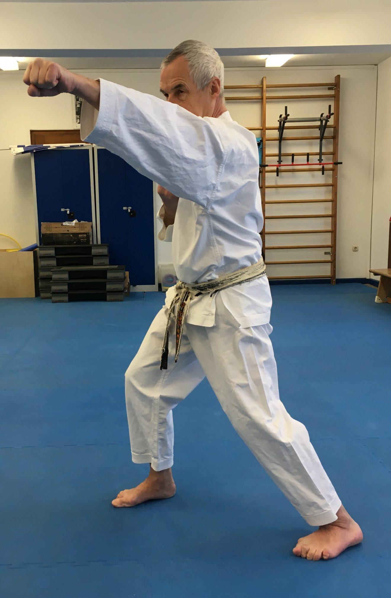 Tai-Sabaki: Prinzipien des Wado-Ryu